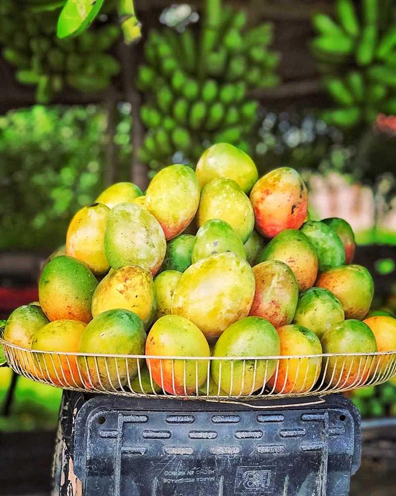 Delicious Dominican Mangos in Baní