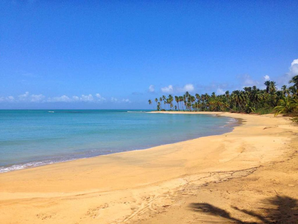 The beautiful and pristine beach of Playa Esmeralda in the area of Miches