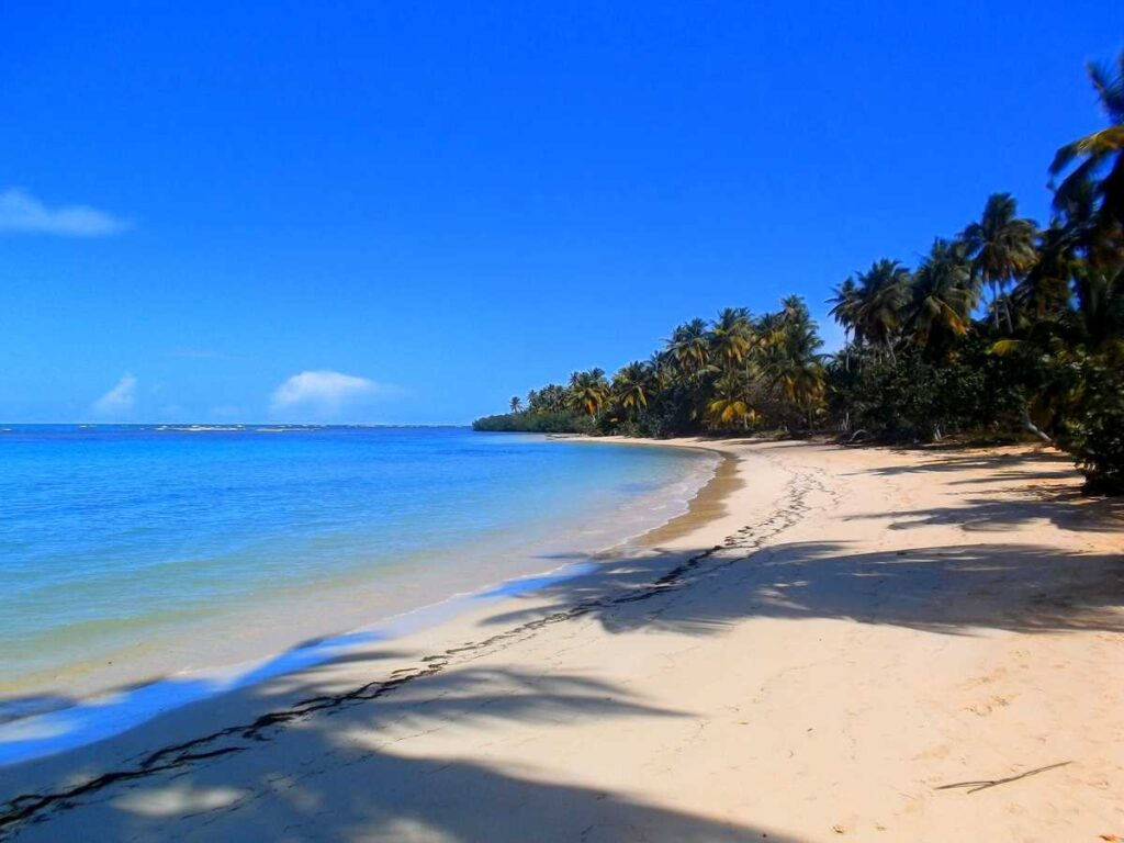 The pristine and quiet beach of Playa La Esperanza on the Samana peninsula