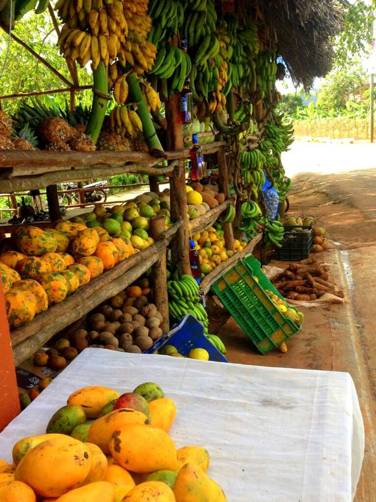 Delicious tropical fruits right on the road when driving in Samana