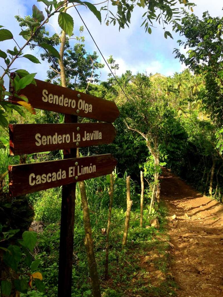 Hike to the waterfall of Salto El Limon on the Samaná peninsula