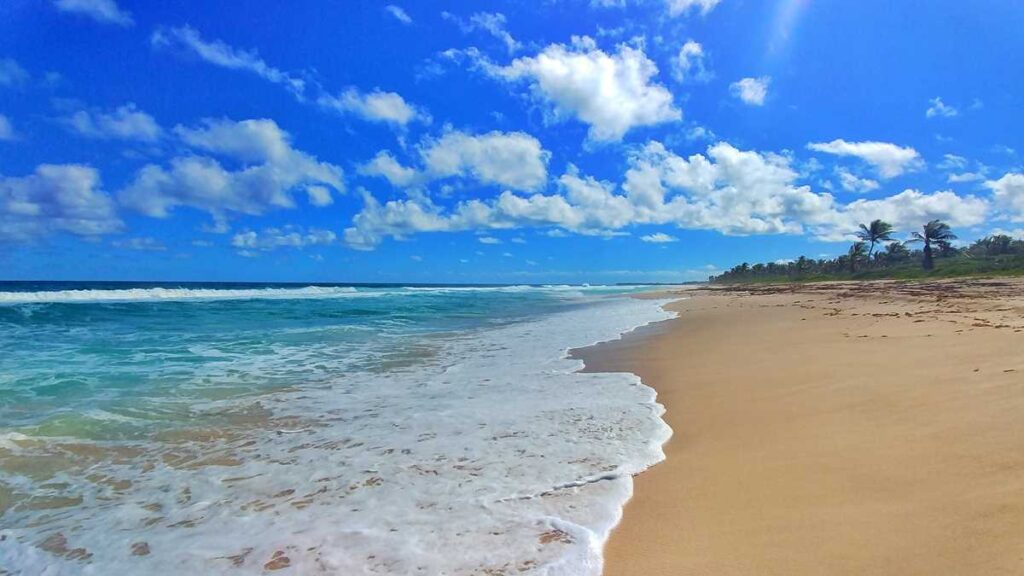 The pristine section of Arena Gorda Beach, one of the virgin beaches of Punta Cana