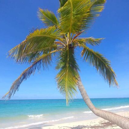 Playa Arena Gorda in Punta Cana, Dominican Republic